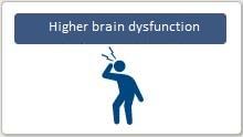Higher brain dysfunction